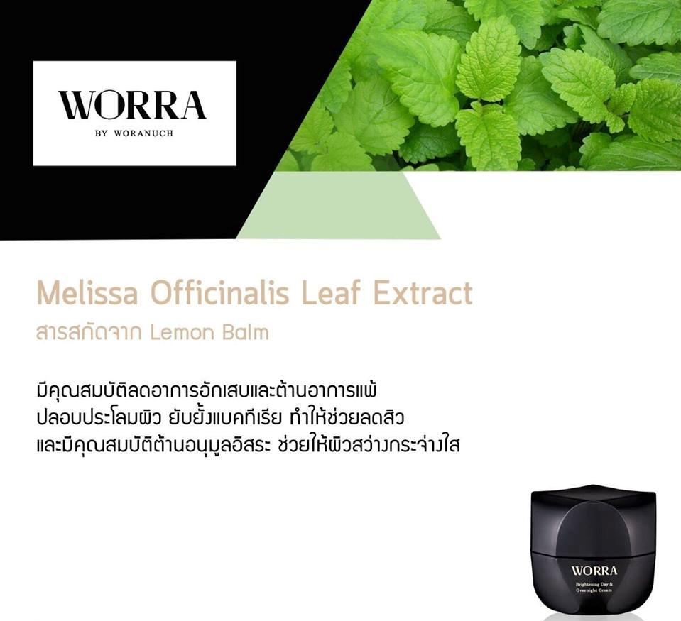 Mentha Piperita (Peppermint) Leaf Extract สารสกัดจากใบเปปเปอร์มิ้นท์ ประกอบไปด้วยแร่ธาตุและสารอาหารสำหรับผิว อาทิเช่น โฟเลต แม็กนีเซียม วิตามินเอ, วิตามินซี และโอเมก้า 3 ซึ่งสารอาหารทุกตัวเป็นประโยชน์ต่อผิวพรรณ และยังช่วยลดการเกิดสิวอักเสบ และลดการเกิดรอยแผลเป็นจากสิว ทั้งยังมีคุณสมบัติต้านอนุมูลอิสระ ช่วยปรับสีผิวให้กระจ่างใส