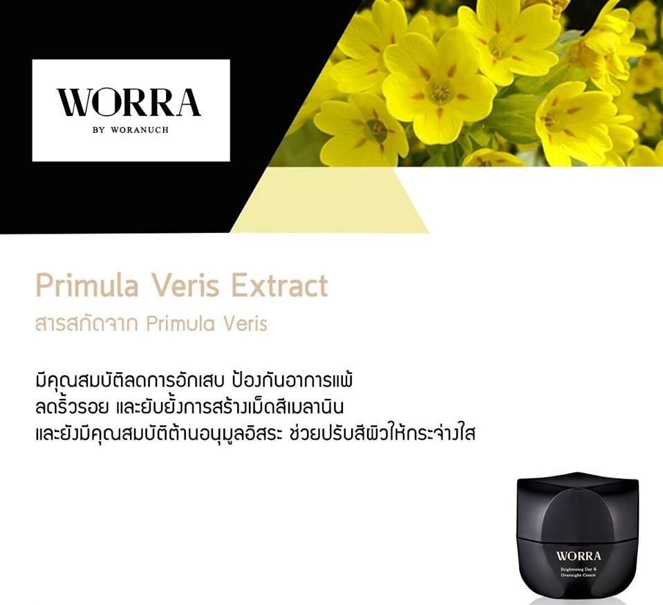 Primula Veris Extract สกัดจาก Primula Veris มีคุณสมบัติลดการอักเสบ ป้องกันอาการแพ้ ลดริ้วรอย และยับยั้งการสร้างเม็ดสีเมลานิน และยังมีคุณสมบัติต้านอนุมูลอิสระ ช่วยปรับสีผิวให้กระจ่างใส