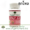 (ยกโหล ราคาพิเศษ) PNP-L4 Organic's Herbs 30 เม็ด อกสวย ผิวใส ภายในกระชับ หน้าอกเต่งตึง ประจำเดือนมาปกติ