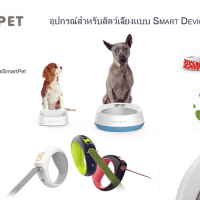 ร้านThai Smart Pet Products