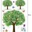 สติ๊กเกอร์ ต้นไม้3ต้น a79 thumbnail 3