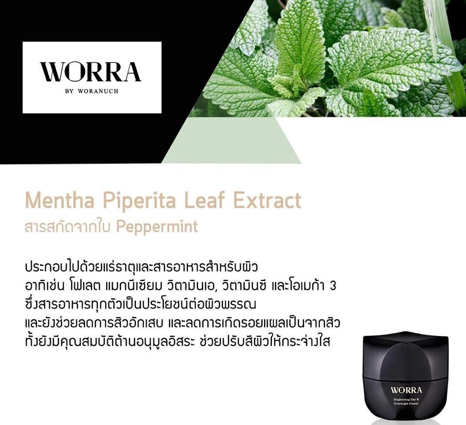 Mentha Piperita (Peppermint) Leaf Extract สารสกัดจากใบของต้นเปปเปอร์มิ้นท์ หรือ สะระแหน่ ประกอบด้วยสารอาหาร แร่ธาตุ วิตามิน และอาหารสำหรับผิว อาทิเช่น โฟเลต แม็กนีเซียม วิตามินเอ, วิตามินซี และโอเมก้า 3 ซึ่งสารอาหารทุกตัวล้วนเป็นประโยชน์สำหรับผิวพรรณ และยังช่วยลดปัญหาการเกิดสิวอักเสบ และลดการเกิดของรอยแผลเป็นจากสิว อีกทั้งยังมีคุณสมบัติต้านอนุมูลอิสระ ช่วยปรับสภาพสีผิวให้กระจ่างใสอย่างเป็นธรรมชาติ